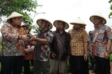 Bibit Sengon Wonogiri pemberdayaan ukm ekonomi kerakyatan infobanknews