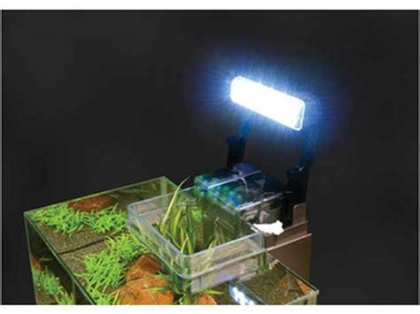 fluval edge beleuchtung fluval edge i das beliebte nano aquarium set im test