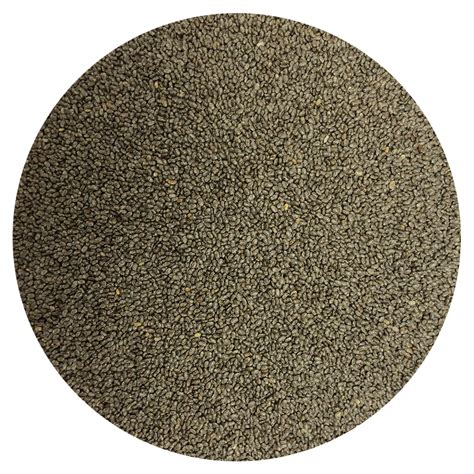 Chia Seeds Black Organic 100 300gr organic premium black chia seeds ekowarehouse