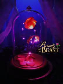enchanted roses enchanted rose disney beauty and the beast light up