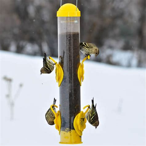 duncraft com yellow select a finch tube feeder
