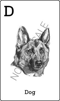 download animal 4d octaland 4d gratis free download jual kartu animal octaland dino space 4d