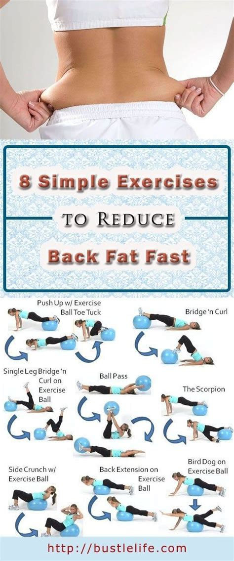 source link  simple exercises  reduce  fat
