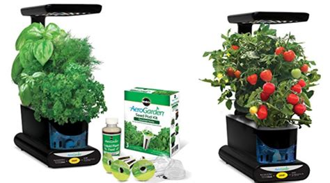 amazon canada todays deals save   miracle gro