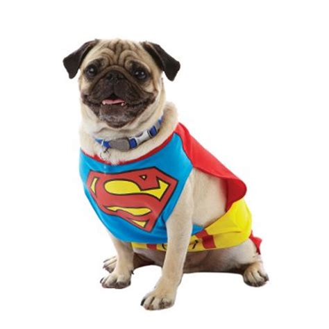 Freekibble Giveaway - pet halloween costume giveaway daily nuzzles cute funny sweet pet stuff