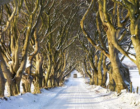 top places to visit in uk snow fall creative hedges northern ireland 10 places to see snow on