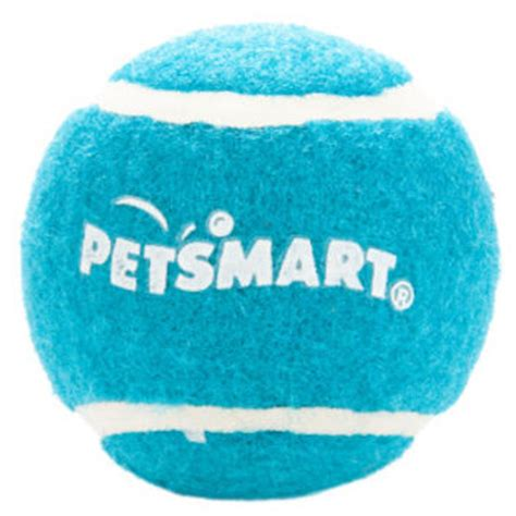 petsmart puppy toys shop petsmart toys on wanelo