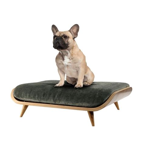 modern dog bed unconventional unique ultra modern dog beds from dogghaus