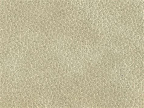 Light Gray Leather Texture Skin Gray Light Leather