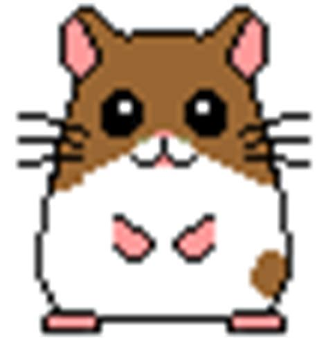 hamster animation hamsters graphics and animated gifs picgifs