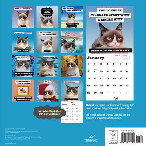 Cat Calendar Grumpy Cat 2017 Wall Calendar 9781452145464 Calendars