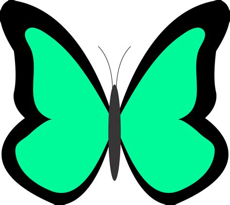 clipart co clip butterfly cliparts co