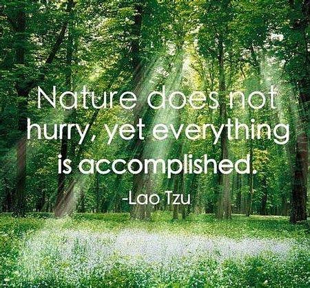 Nature Quotes Importance Of Nature Quotes Quotesgram