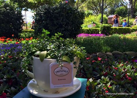 disney flower and garden festival 2017 epcot flower and garden festival the disney food