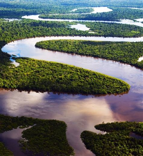 amazon travel amazon river seen via riverboat tour from belem to