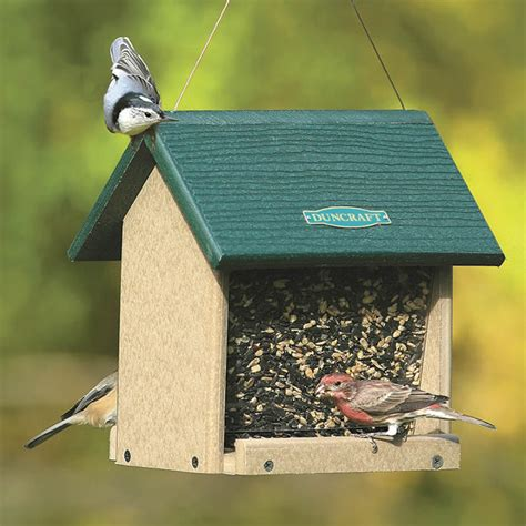 Eco Friendly Bird Feeders duncraft duncraft 4083 eco friendly songbird hopper bird feeder