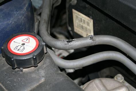 Marderschaden Auto so testen autohersteller mittel gegen marderbisse auto news