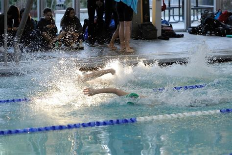 backyard freestyle prep swimming gallery warriors take on shorecrest in