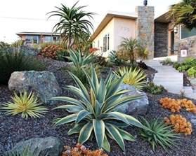 17 best ideas about desert landscaping backyard on pinterest succulents garden drought