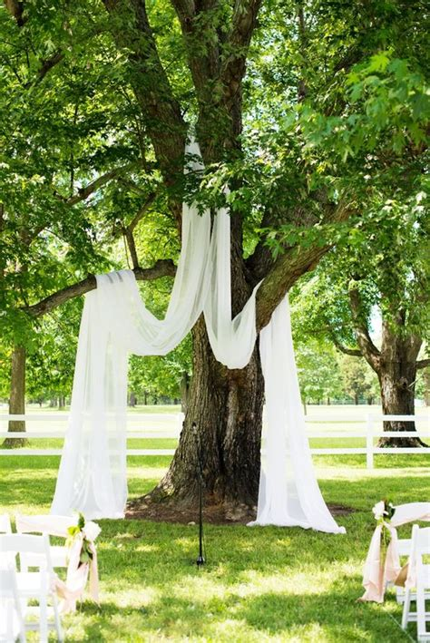 wedding backdrop trees 18 stunning tree wedding backdrop ideas for ceremony page 2