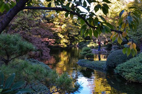 Japan Botanical Garden Fort Worth Botanic Garden Japanese Garden Albany Kid Family Travel