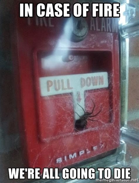 Spider Fire Alarm Meme - in case of fire we re all going to die spider fire alarm