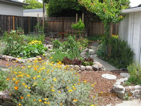 backyard permaculture design new permaculture garden redwood city wild willow