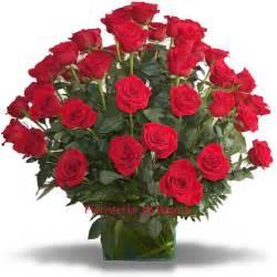 imagenes de rosas rojas para una madre fotos de rosas rojas fotos de flores