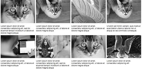 photo layout with captions using modern css to build a responsive image grid sitepoint