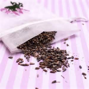 Flowers For First Communion - lavender seeds 8 ounces garden theme wedding favors