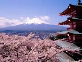 Washington Dc Flower Shops - japan wallpaper spring photos gallery 8568 free wallpaper