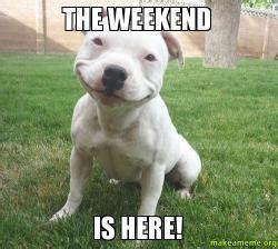 Weekend Dog Meme - the weekend is here make a meme
