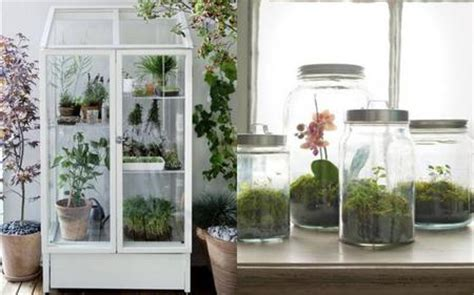 decorar rincon con plantas r 225 pidas y f 225 ciles ideas para crear rincones con plantas y
