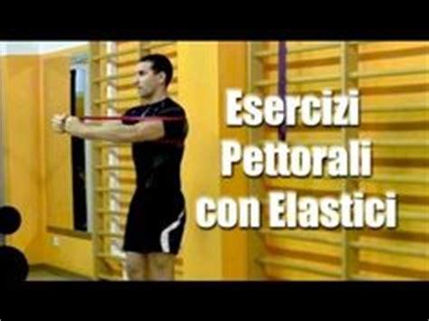 esercizi pettorali casa the world s catalog of ideas