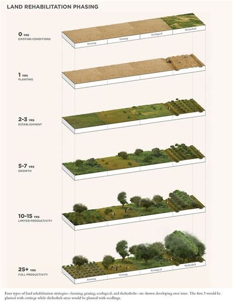 land section layout land rehabilitation phasing landart pinterest