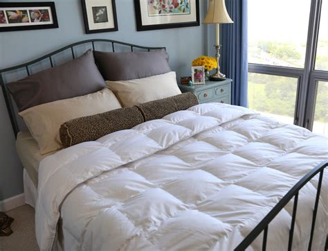 premium down comforter premium sliver antimicrobial white goose down comforter
