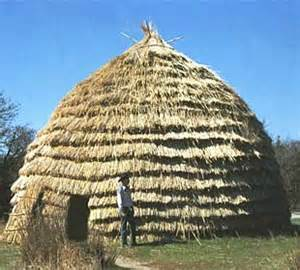 grass haus grass houses and hay said the