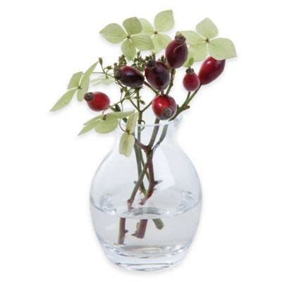 Dartington Flower Vase by Buy Vase With Flowers From Bed Bath Beyond