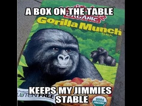 Gorilla Munch Meme - gorilla munch a box on the table keeps my jimmies stable