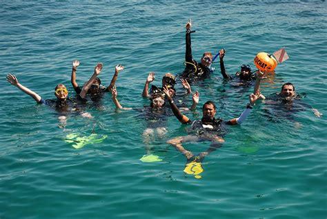 padi dive courses padi dive courses b j diving in tioman