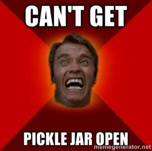 Pickle Meme - pickle jokes kappit