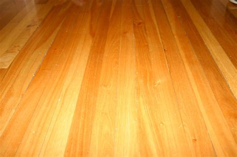 Floor S Remedy A Squeaky Hardwood Floor Shell Busey Home