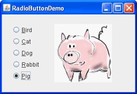 swing radio button how to use buttons check boxes and radio buttons the