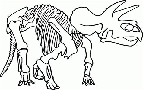 fossil coloring pages coloring home