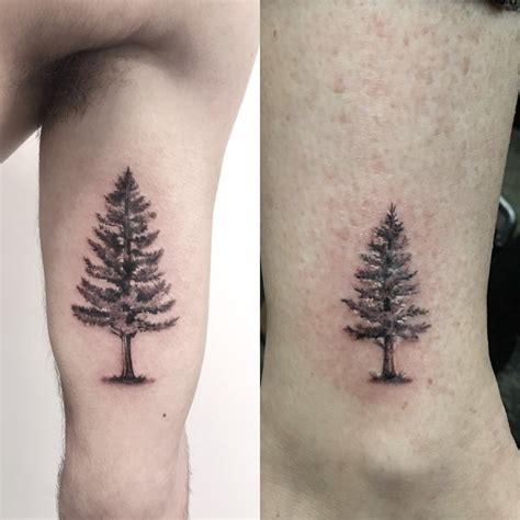 pine tree wrist tattoo the gallery for gt pine tree on wrist
