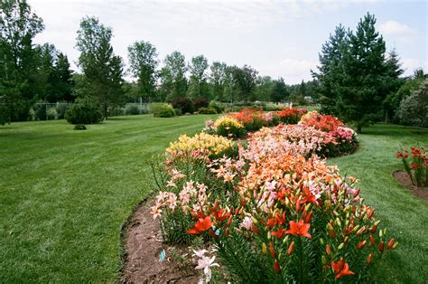 St Albert Botanical Gardens Photos St Albert Botanic Park