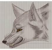 Angry Wolves  Foto Bugil Bokep 2017