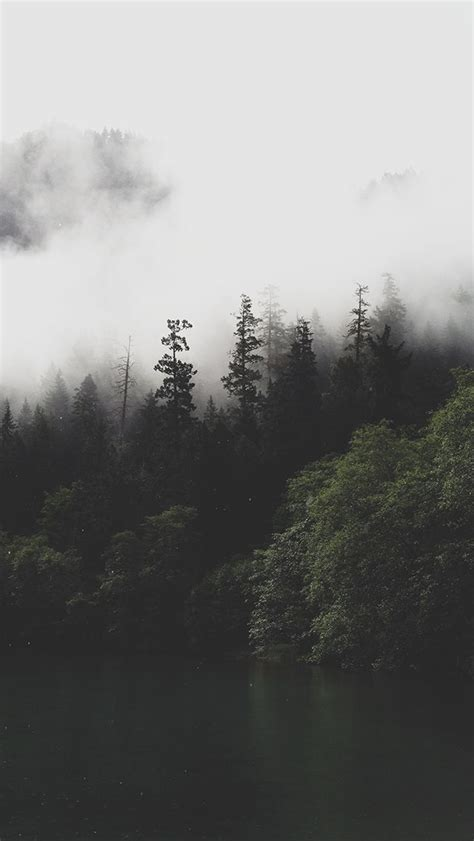 wallpaper iphone forest mountain forest lake mist iphone 5 wallpaper hd free