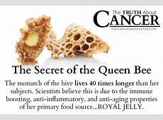 Can Royal Jelly Cure Cancer? Royal Jelly Benefits