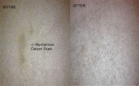 how to clean stubborn carpet stains with an iron and how to clean stubborn carpet stains with an iron and